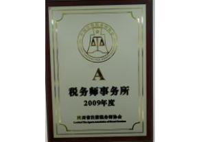 2009年度A级税务师事务所